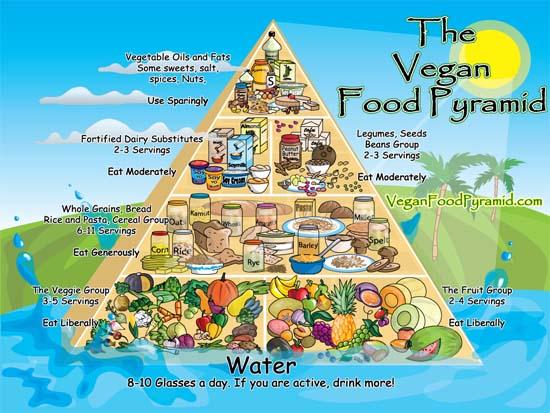 The Vegetarian and Vegan diet food pyramid